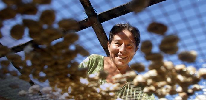Woman on a coffee farm