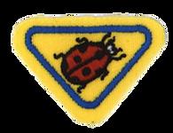 004741-Ladybugs.png