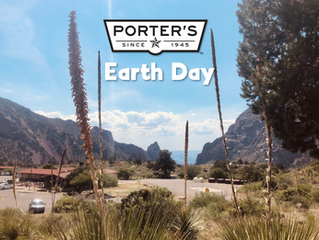 Tips to help the environment on Earth Day
