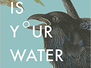 Book Review: Fire is Your Water