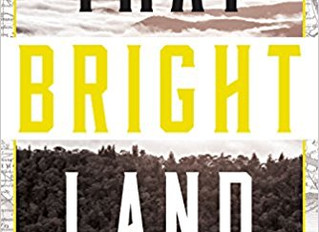 Book Review: That Bright Place