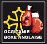logo_comité_occitanie_2020__2021.png