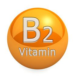 Витамин B2 / Рибофлавин