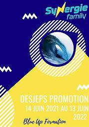 Ebauche de programme du DESJEPS