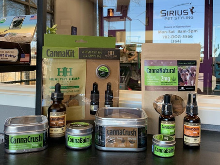 Health Benefits of CBD for Dogs & Cats