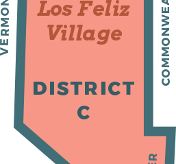 District C Candidate Statements