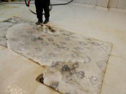 limpieza alfombras afganas