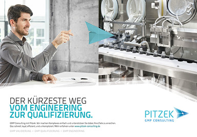 Pitzek GMP Consulting