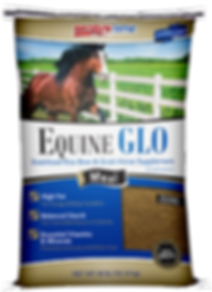 Equine-GLO-Bag-Mockup.png