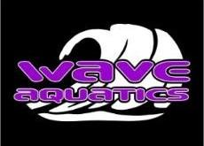 Wave Aquatics Swim Team Tryout