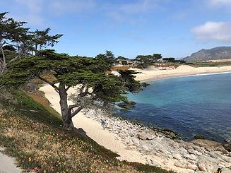 Scenic view of sunny beach in Carmel California