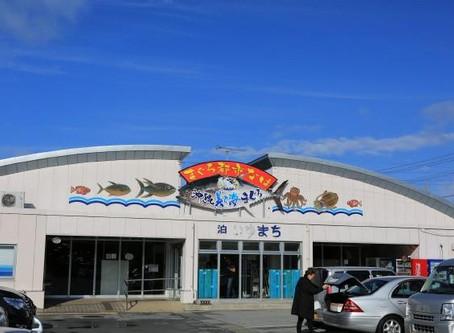 沖繩的魚市場 「泊いゆまち」