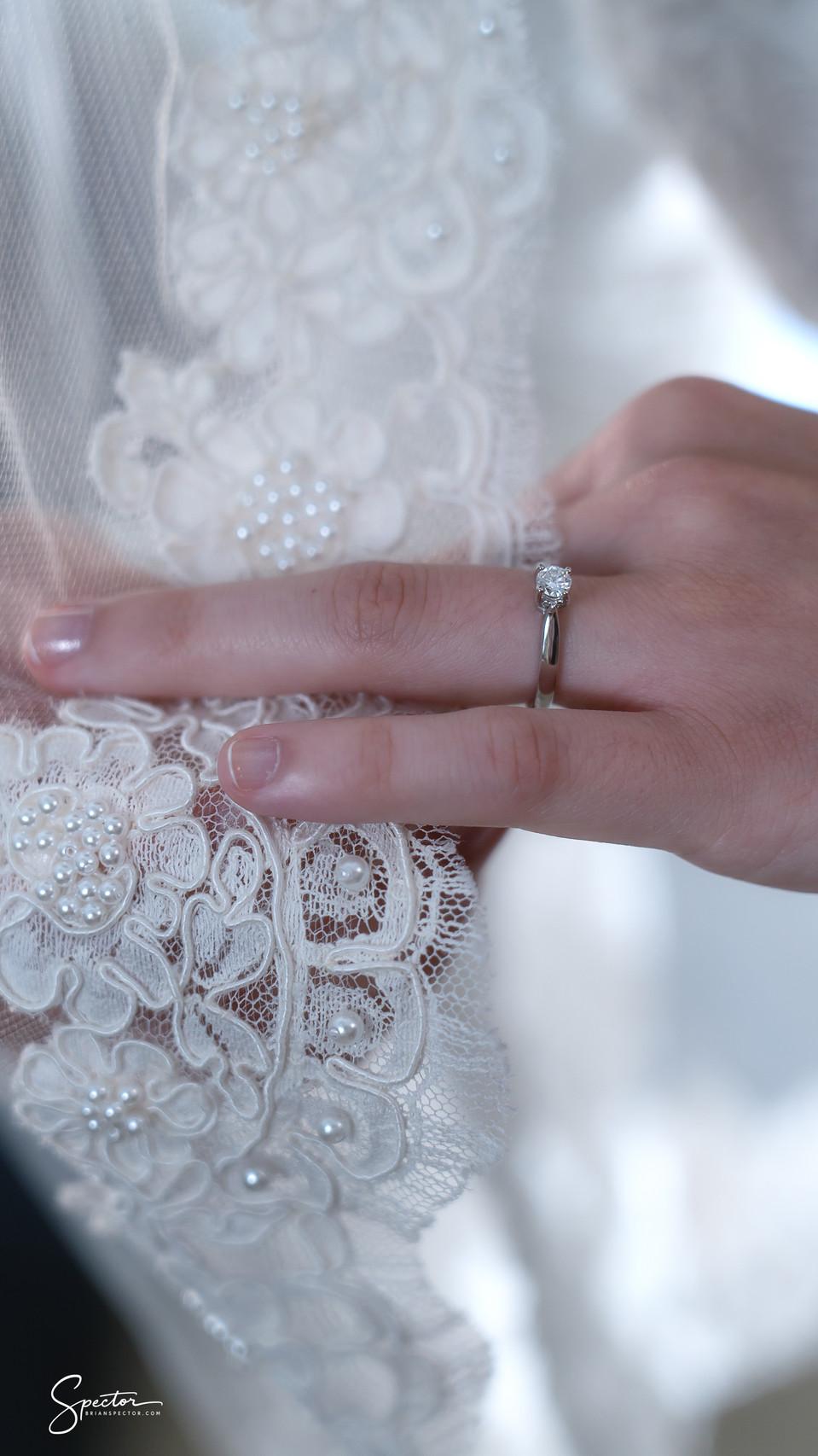 Sarah and Shaya Wedding Pics--9.jpg