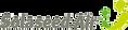 Solaseed Air logo 2011.png