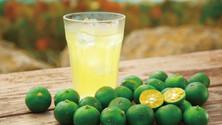 [食譜]沖繩特色飲品