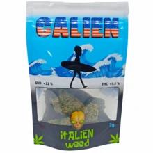 CALIEN