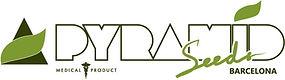 PyramidSeeds_logoColor_ 829x233-min.jpg