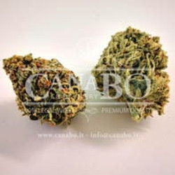 Mandarin CBD 25%-min