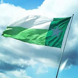 texas Green flag.jpg