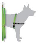 Black Dog Balance Training Pack