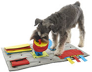 Buster Activity Mat2.jpg