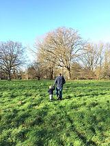 Field Hire in Surrey
