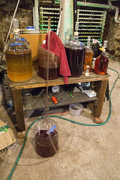Wine making.jpg
