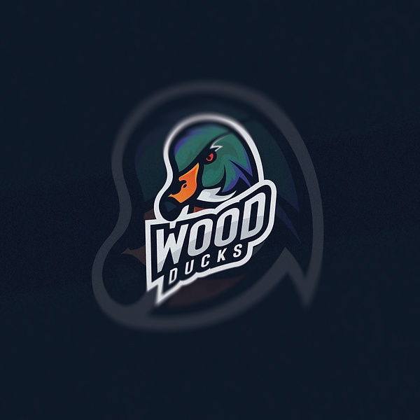 Final Wood Duck Logo.png