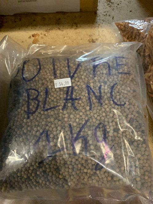 Poivre blanc 1kg