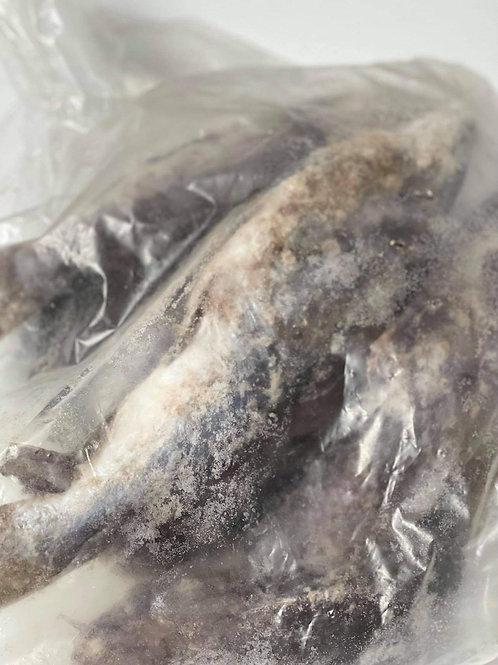 Mâchoiron sac 2,7kg