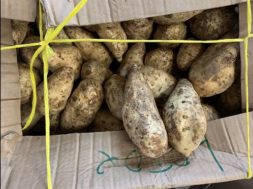 Patate du Cameroun (kg)