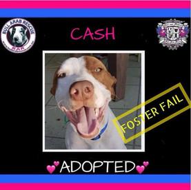 cash adopted.jpg