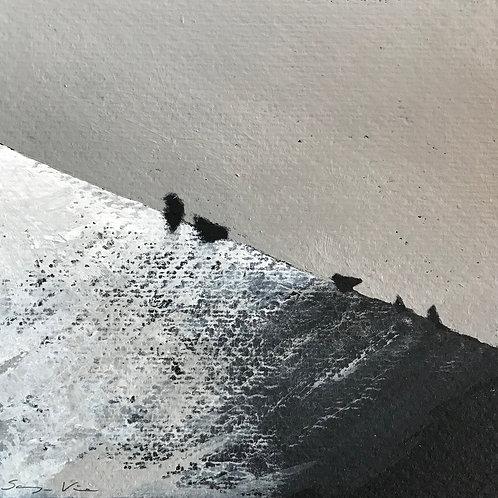 Birds Meeting on Roof