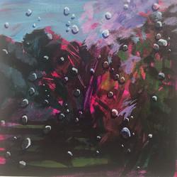 Through the Raindrops 1