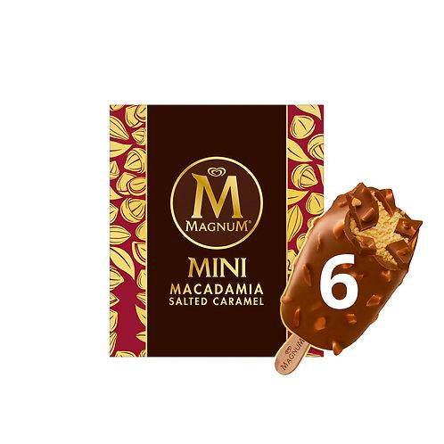 Magnum Mini Ice Cream - Macadamia Salted Caramel 360ml (6 per pack)
