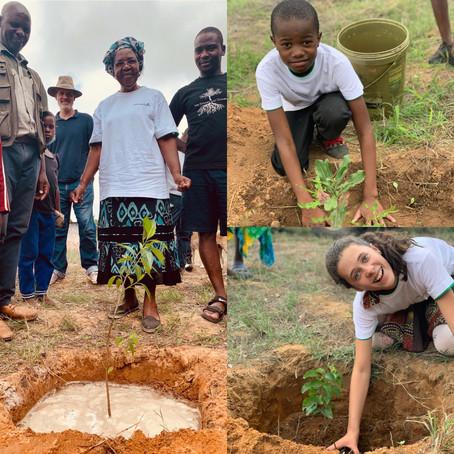 Tree Planting Day