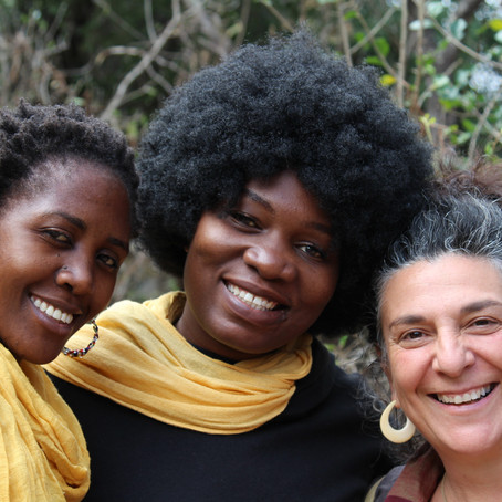Healing Social Fabric: Reflection on Gateway Zimbabwe's first Processwork Forum