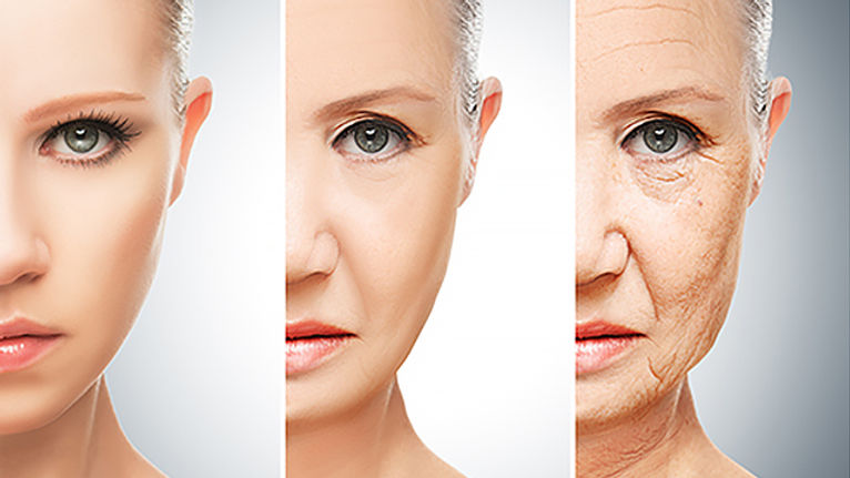 Come invecchia la pelle delle donne