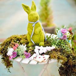 #aliceinwonderland #green #bunny #sweets #styledshoot #rdkphotography