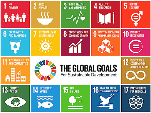 Sustainable Foreign Policy: Sustainable Development Goals As a Foreign Policy Tool