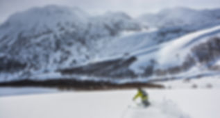 Cat ski (21 of 21).jpg