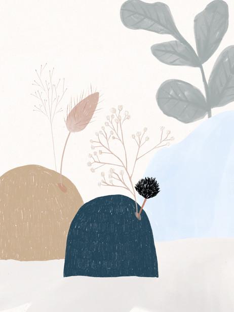 Rochers & Montagnes