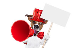 jack russell dog ,shouting  and advertising  sale discount  with retro megaphone or big mi