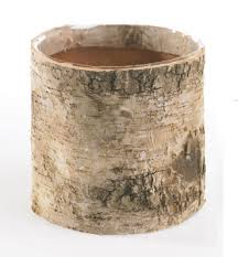 Birch Vase.png
