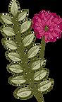 Botanik