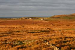 View from Drumlanrig