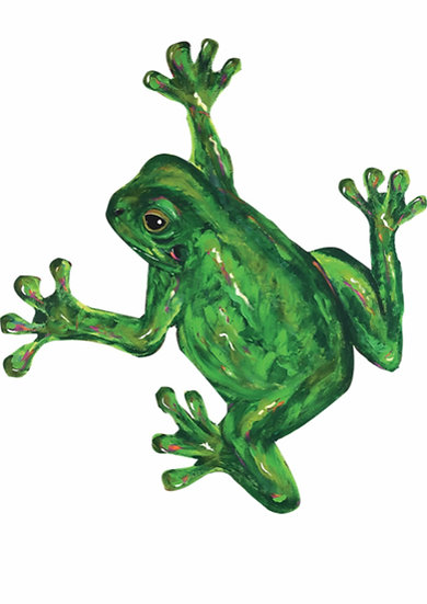 Caravan Decal Mr McRibbit