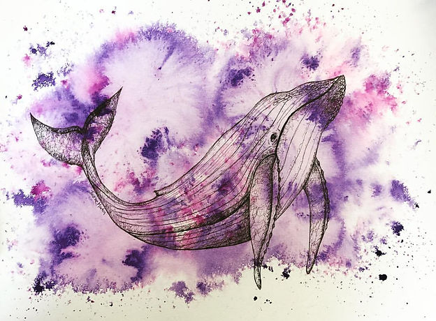 ink drawing whale painting artwork