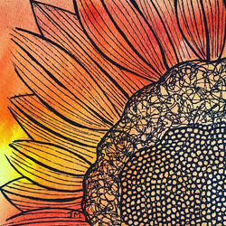 a sunflower drawing