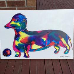 'Snag Dog'